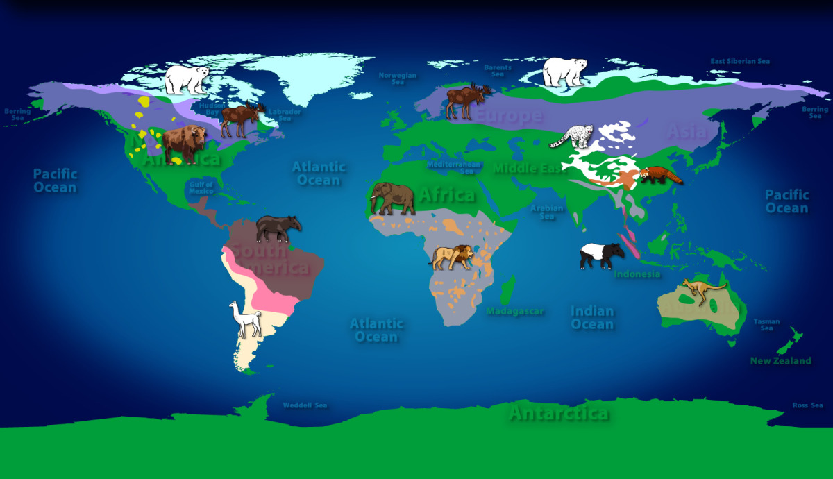 slide_Mammals-of-the-World